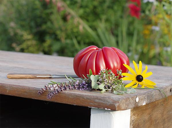 Foto von Peter Brinkhoff - Stilleben mit Tomate